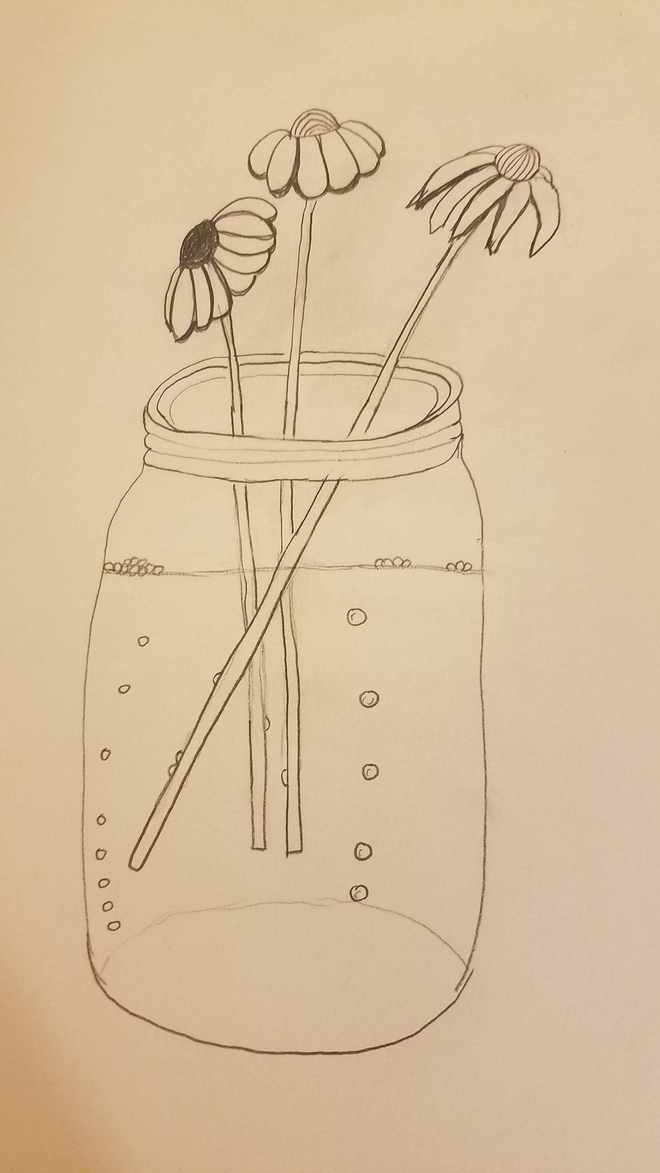 three-daisies-in-glass-mason-jar-doodle